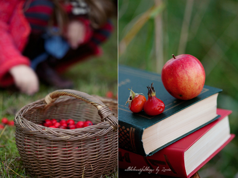 all the beautifull things autumn