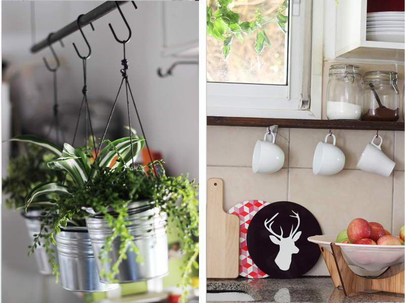DIY design it yourself hanging plants