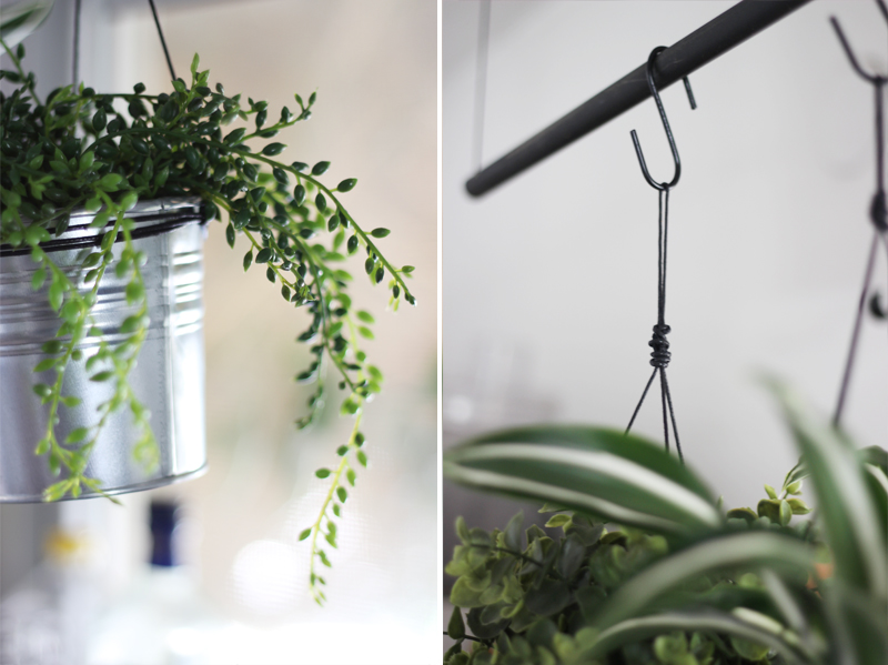 DIY design it yourself plants hanging