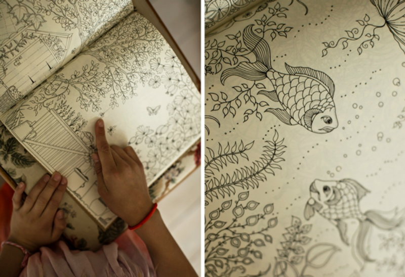 secret garden drawing book