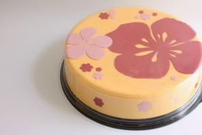 קייקאיט: עוגות יפיפיות בהכנה עצמית