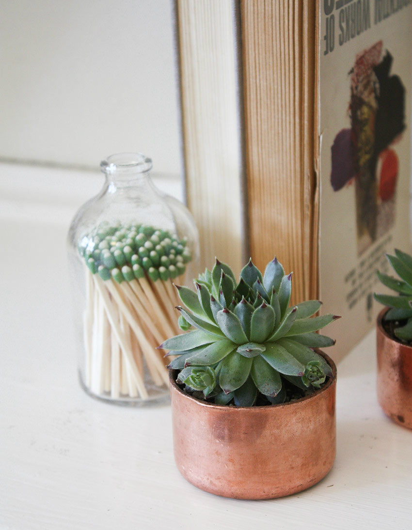 home-copper-planters for cactus