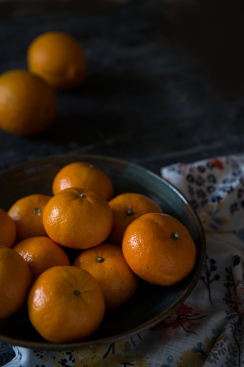 citrus gallete4