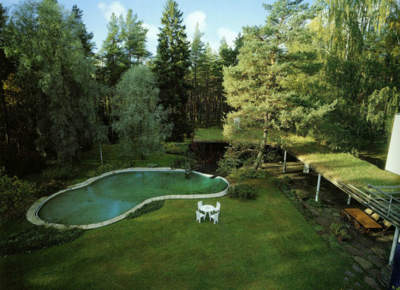 nature inspired pool design
