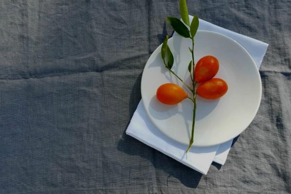 oranges centerpiece for tu bishvat