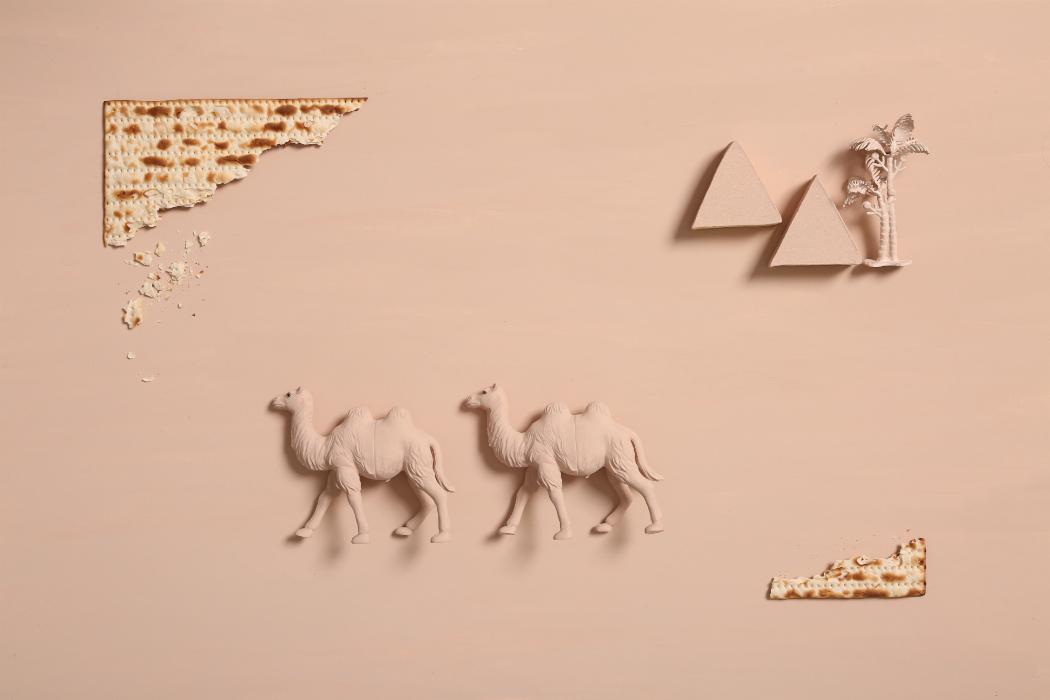 camels, desert, matzo, matza, pyramids, egypt
