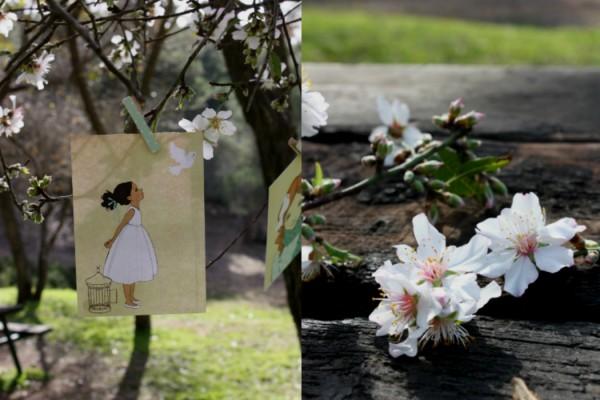tu bishvat blossom הפריחה ולא הפרי