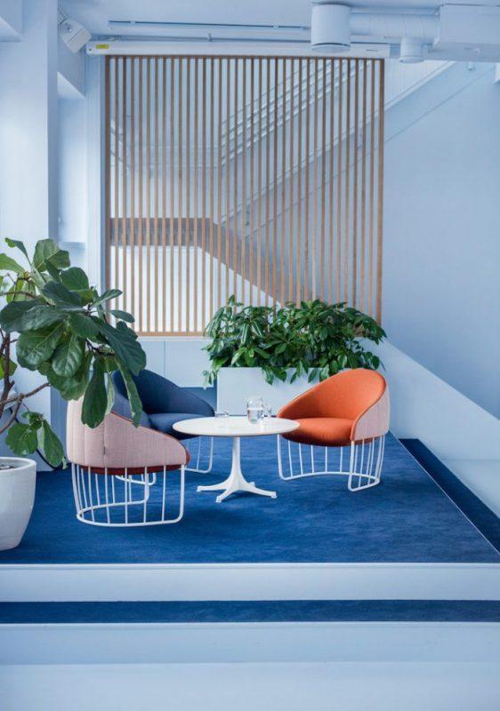 design office interior design in monochrome blue and living coral