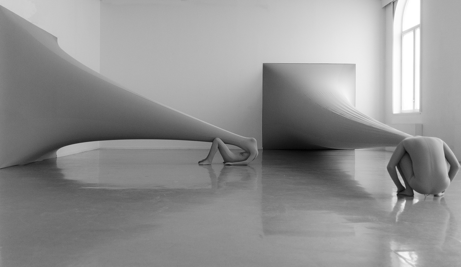 squared elasticity by Malin Bulow